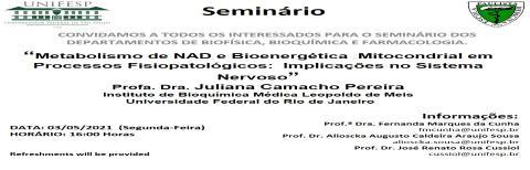 Seminários INFAR - 03/05/2021