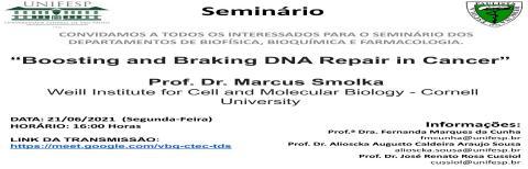Seminários INFAR - 21/06/2021